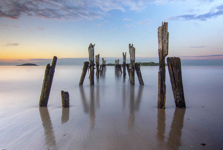 West Beach Deadwood by Steve Shannon