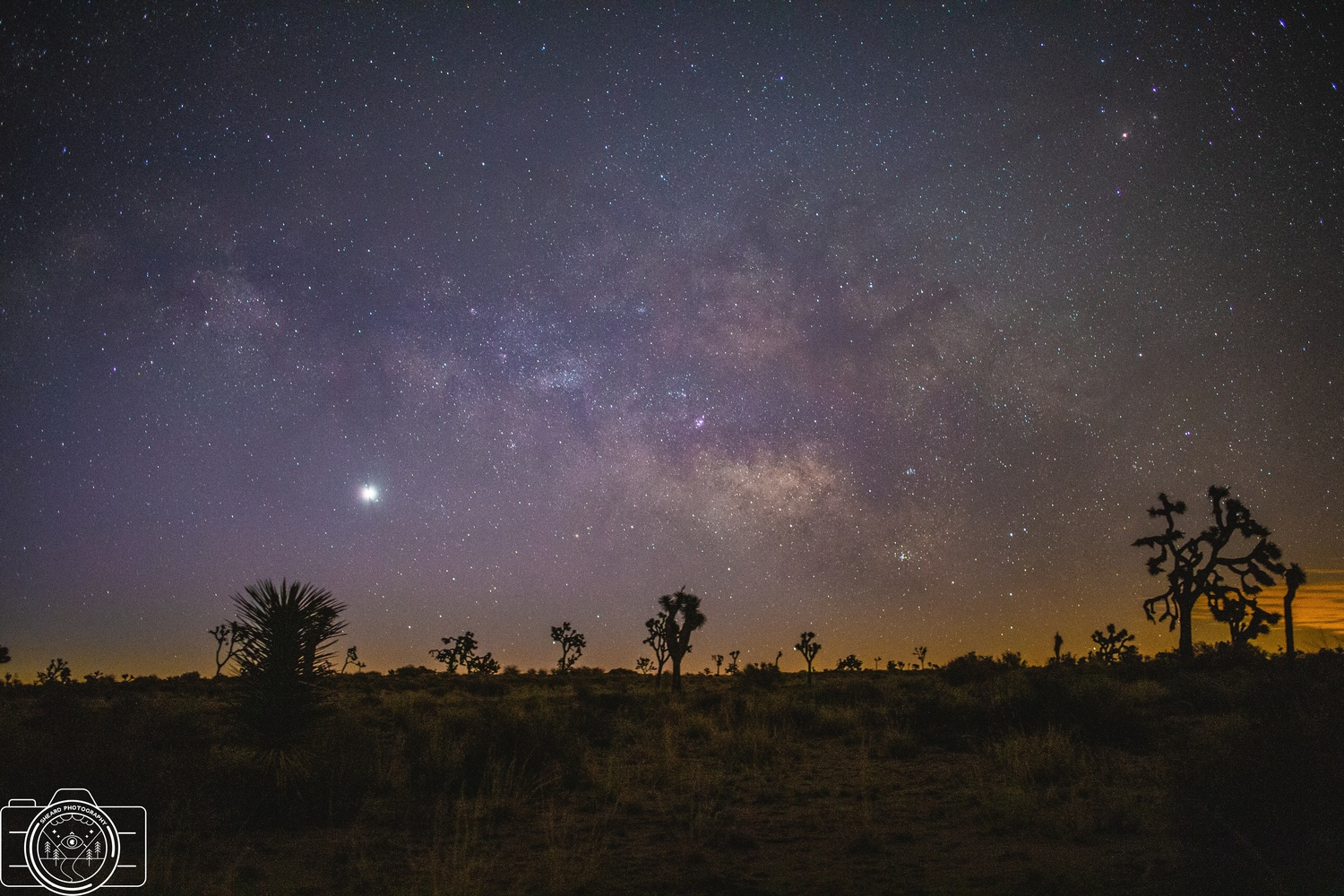 Milky Way by Greg Sheard