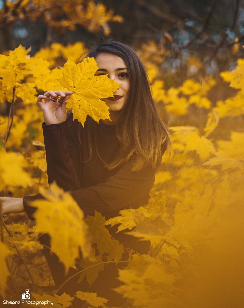 Autumn with Maria by Greg Sheard