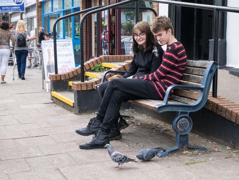 Pigeon Rest by Natalie Lancey