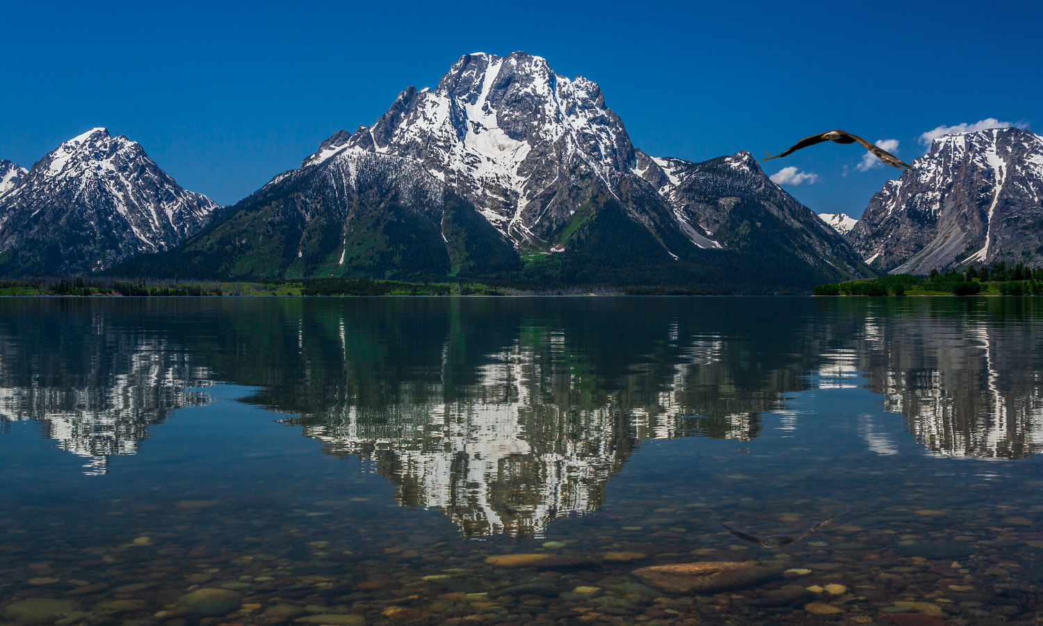 Mountain Harmony by Ron Diel