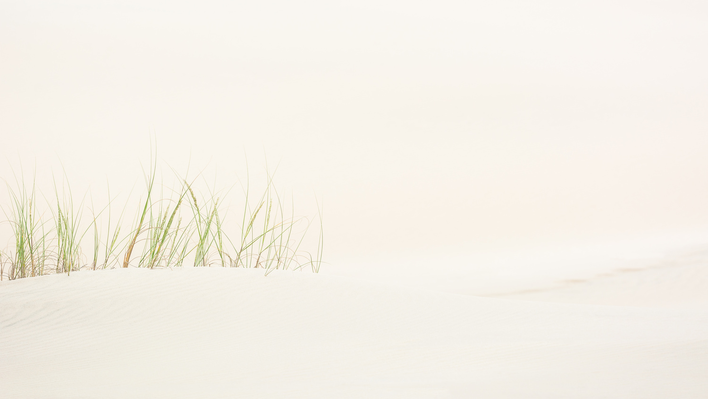 Subtle Dunes by Rodrigo Malutta