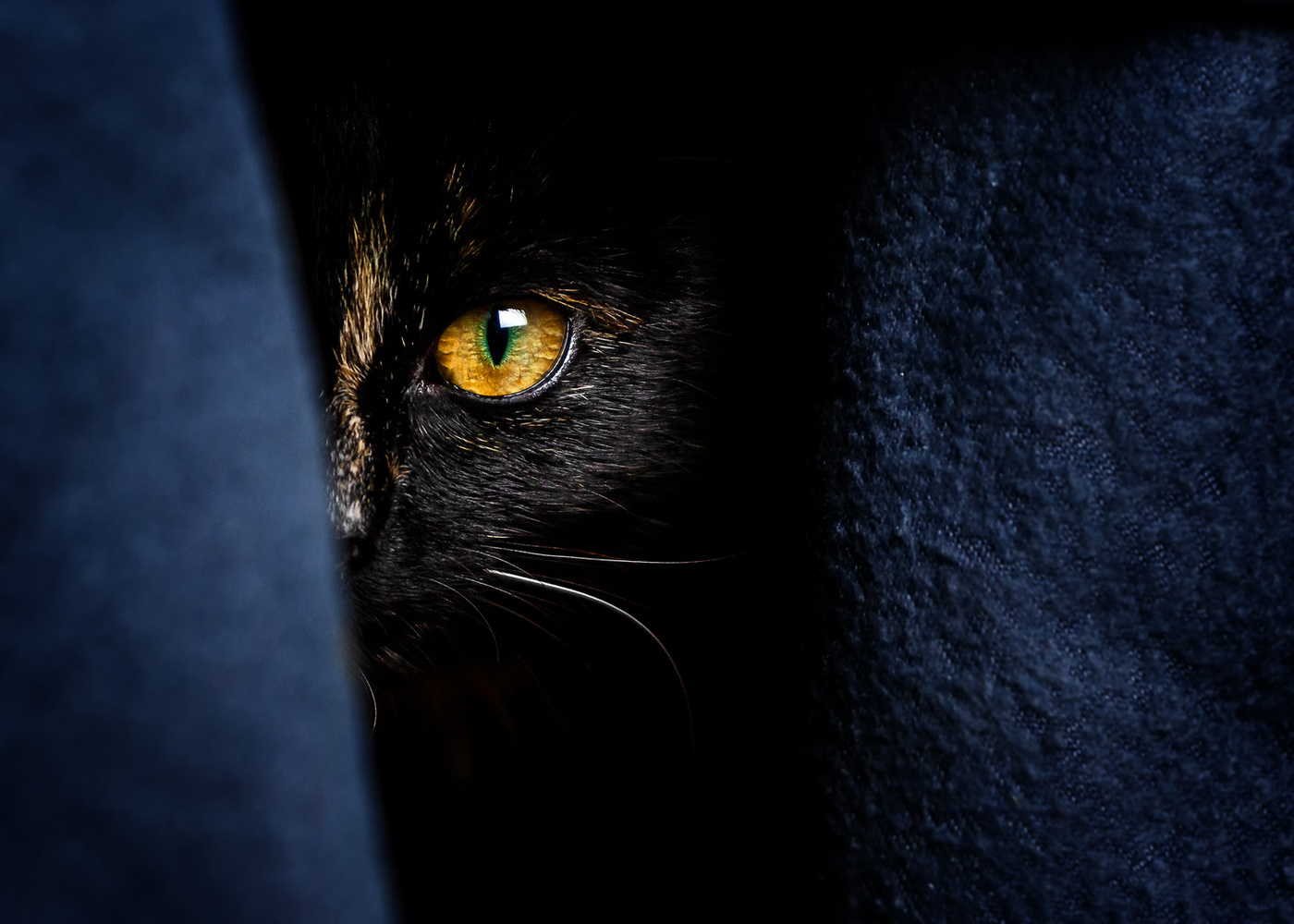 I see you by Patrick Illhardt