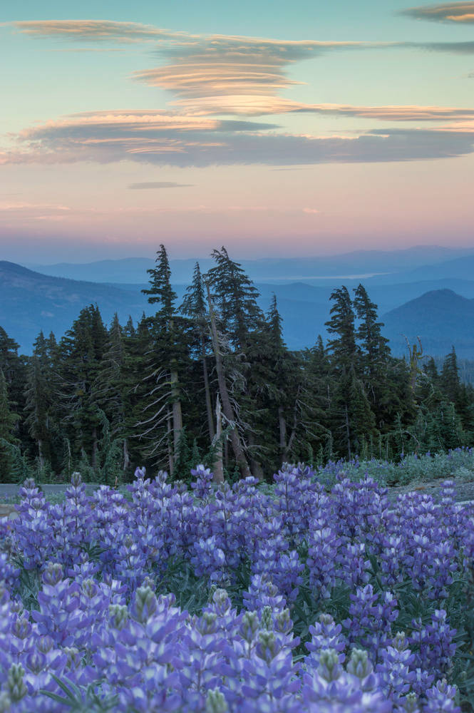 Blue Hour at Lassen by Thomas Herbst