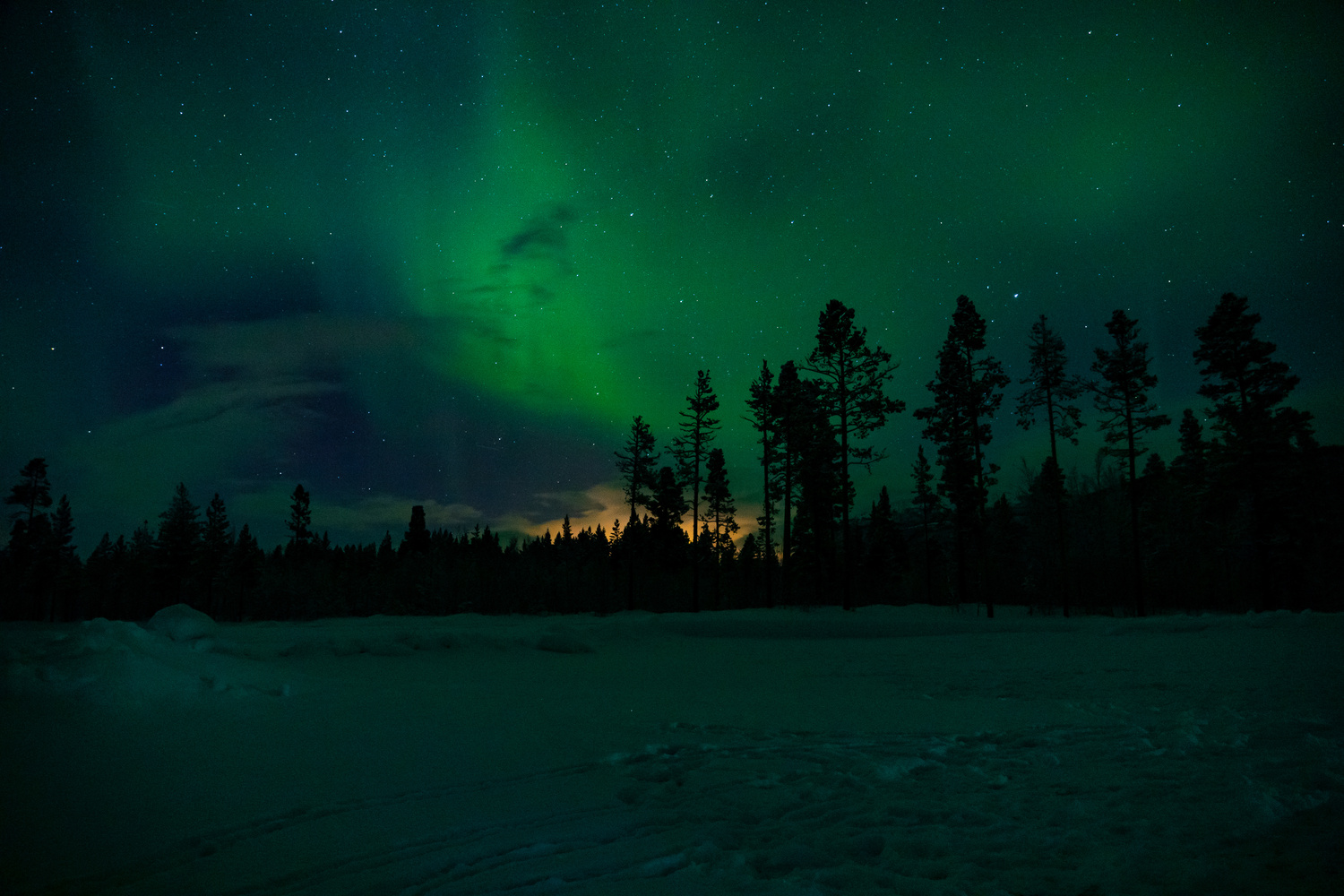 Citylight polution through the forest, accompanied by the magical Aurora Borealis. by Marc B.
