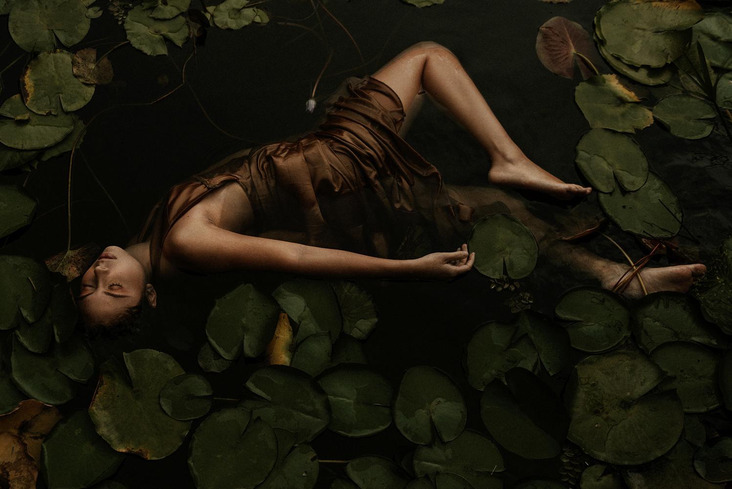 DAFNE II by Paola Padron