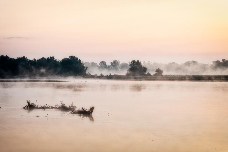 Misty sunrise by Aneta Reluga