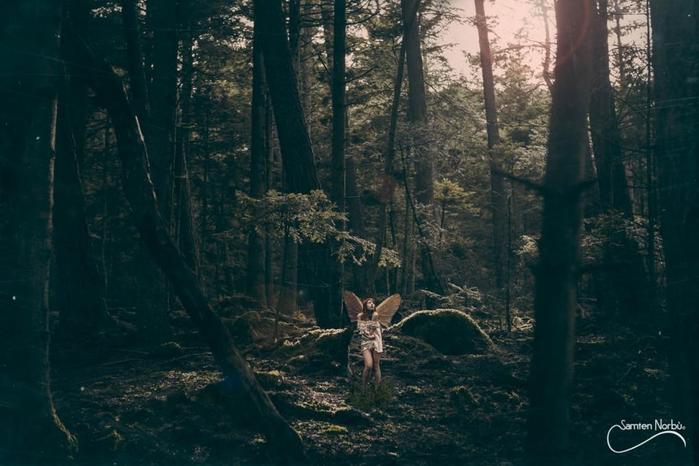 Wood faery by Samten Norbù