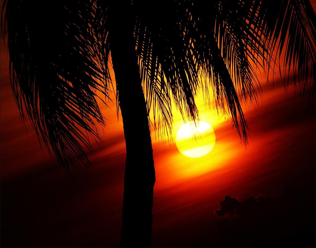 A sunset! by Nichott Leon