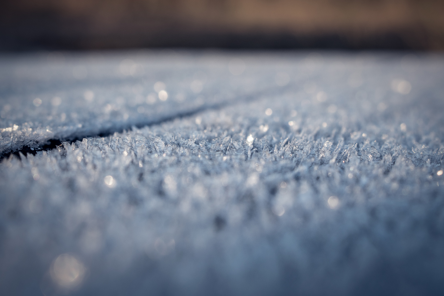 Icy table by Rene Larsen