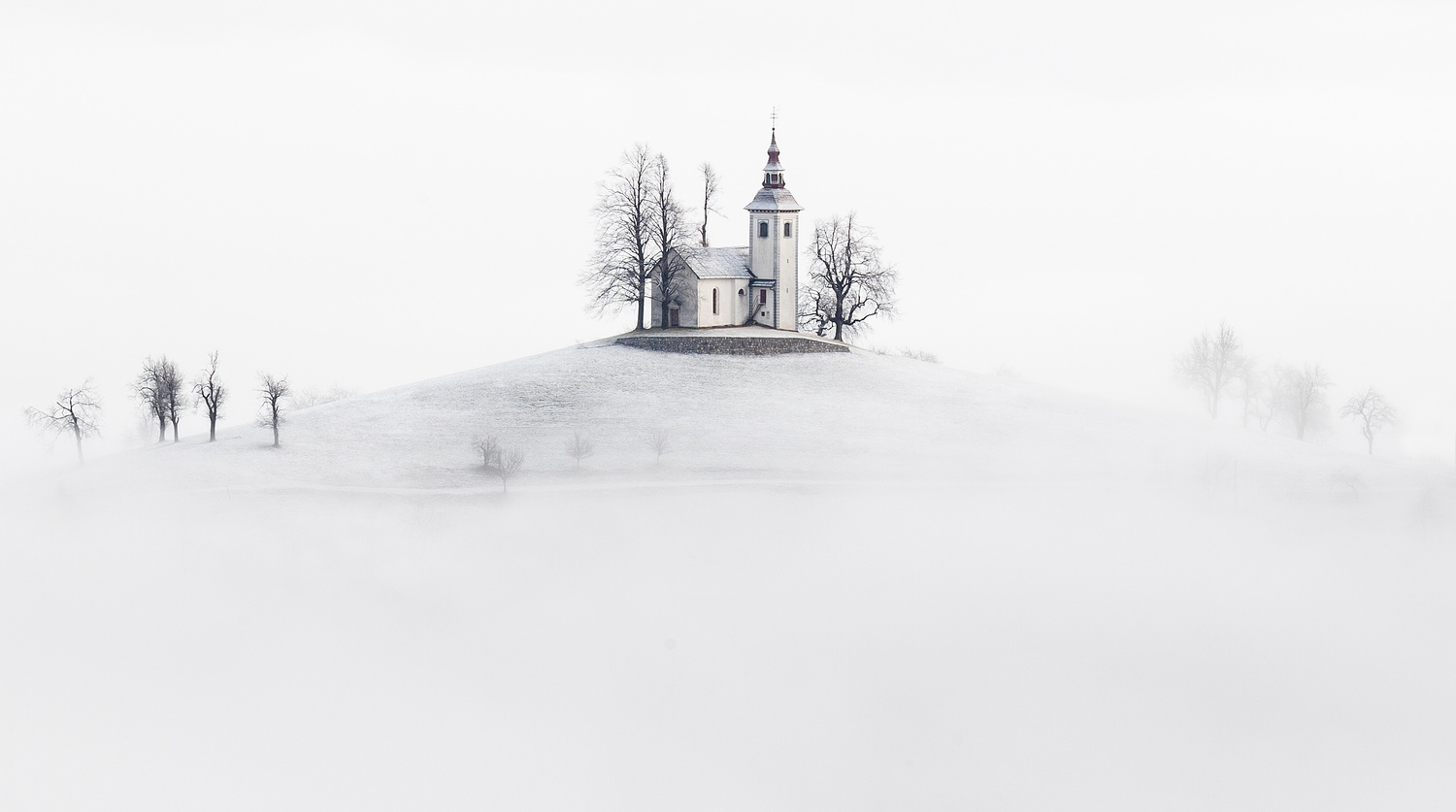 Whiteout by Piotr Skrzypiec