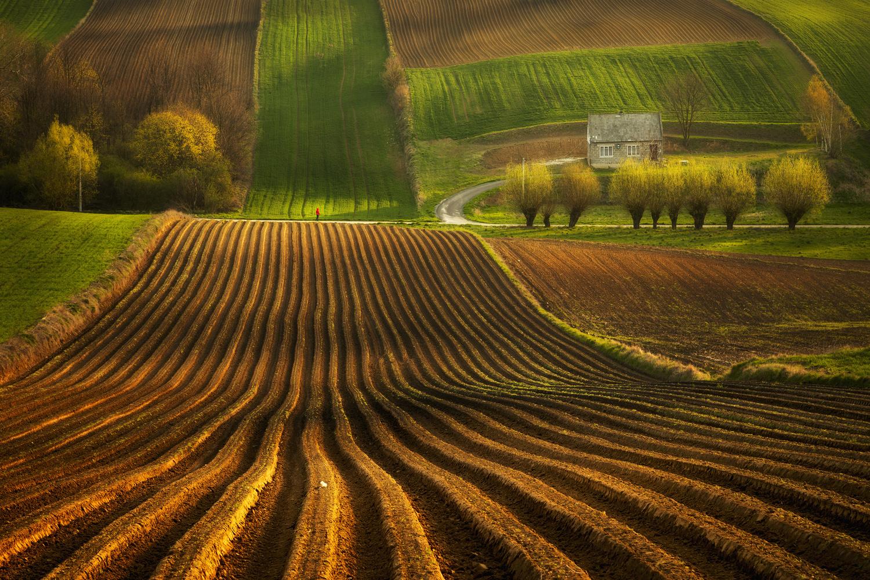 Polish countryside by Piotr Skrzypiec