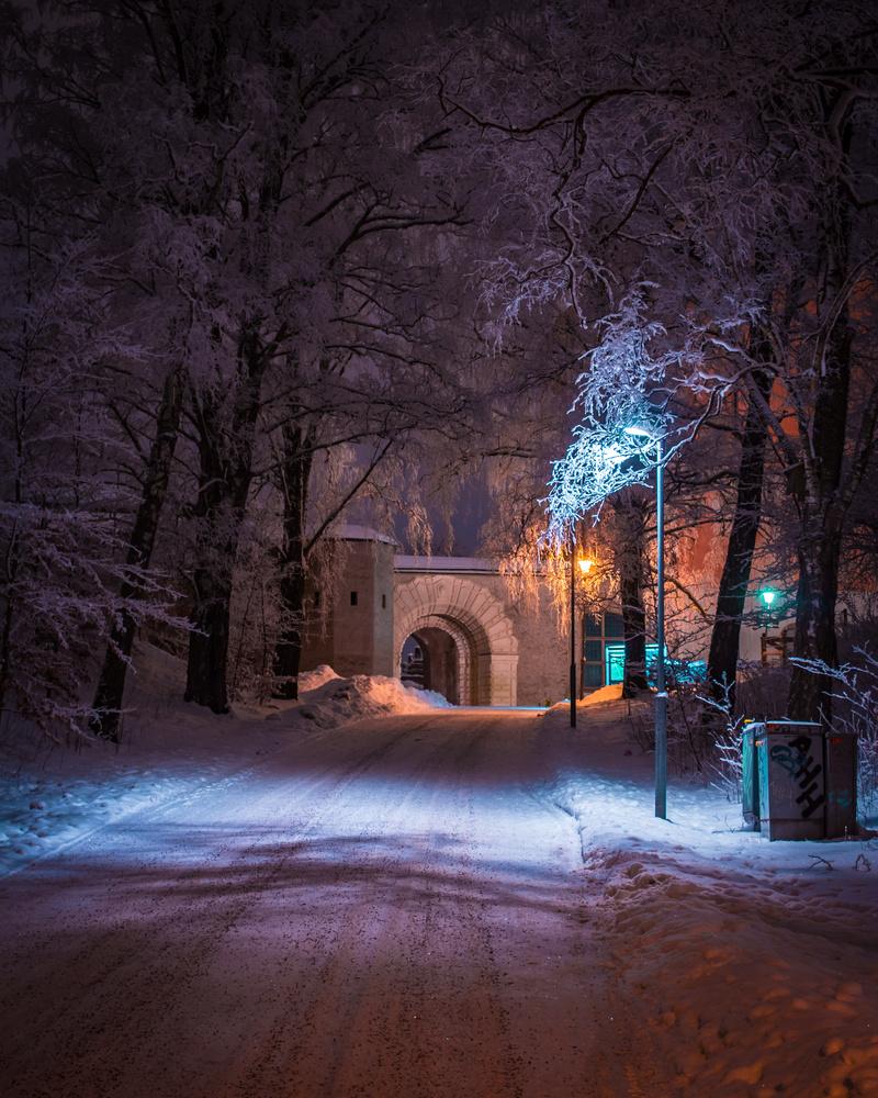 Road to royals by Magnus Ådegren
