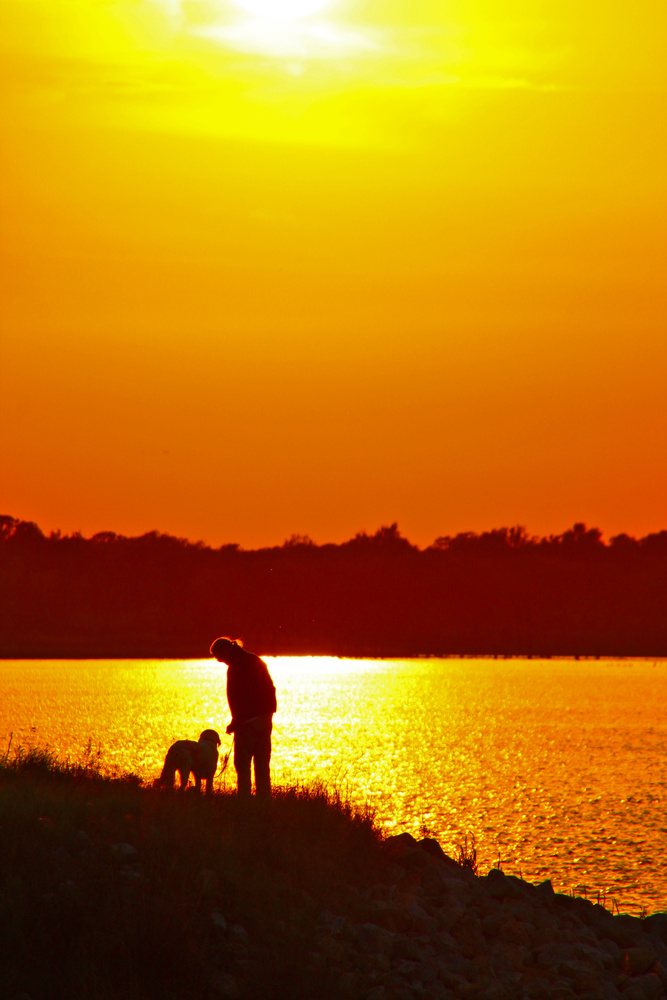 A Man and His Dog at Sunset by Lorinda Ray