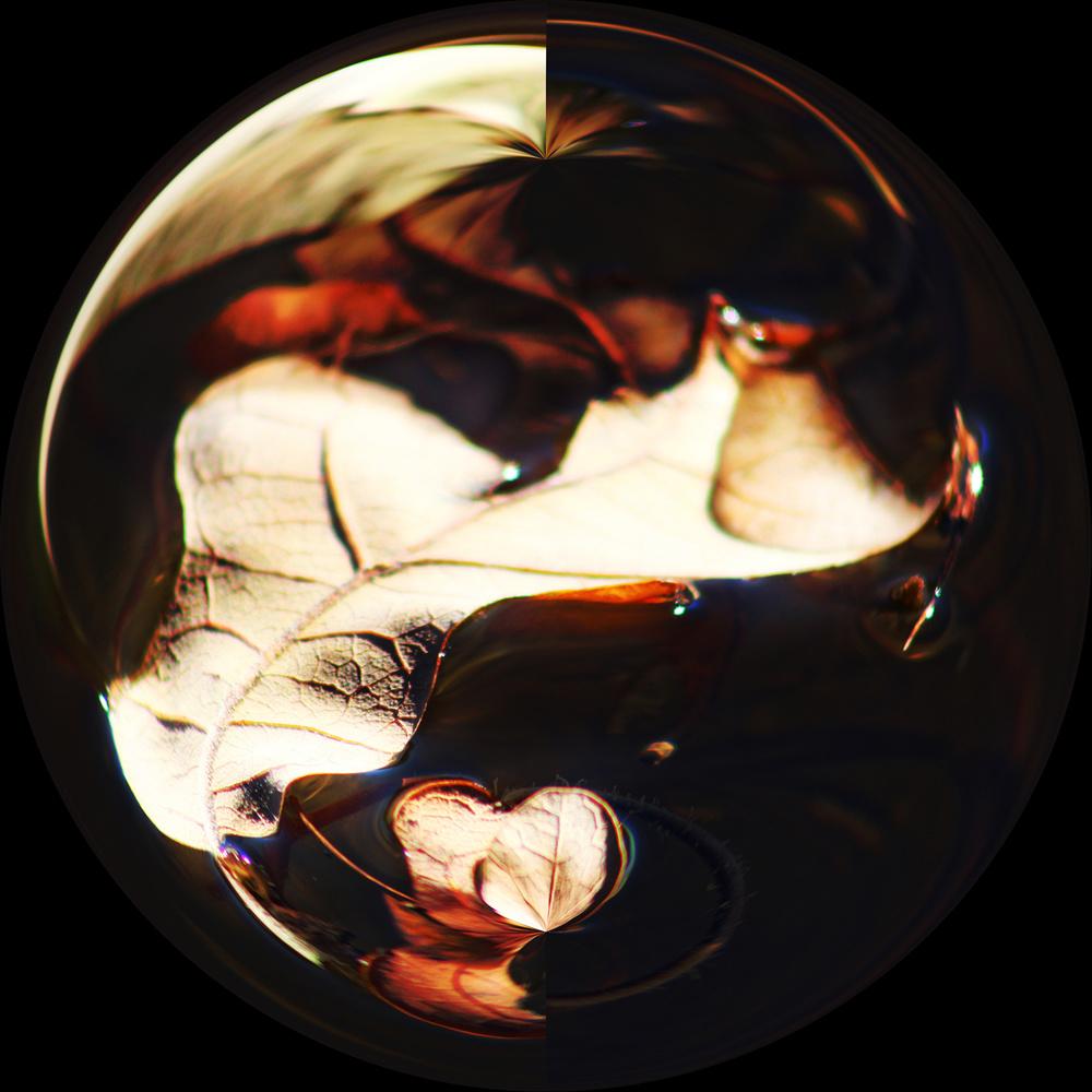 Leaf Sphere by Lorinda Ray