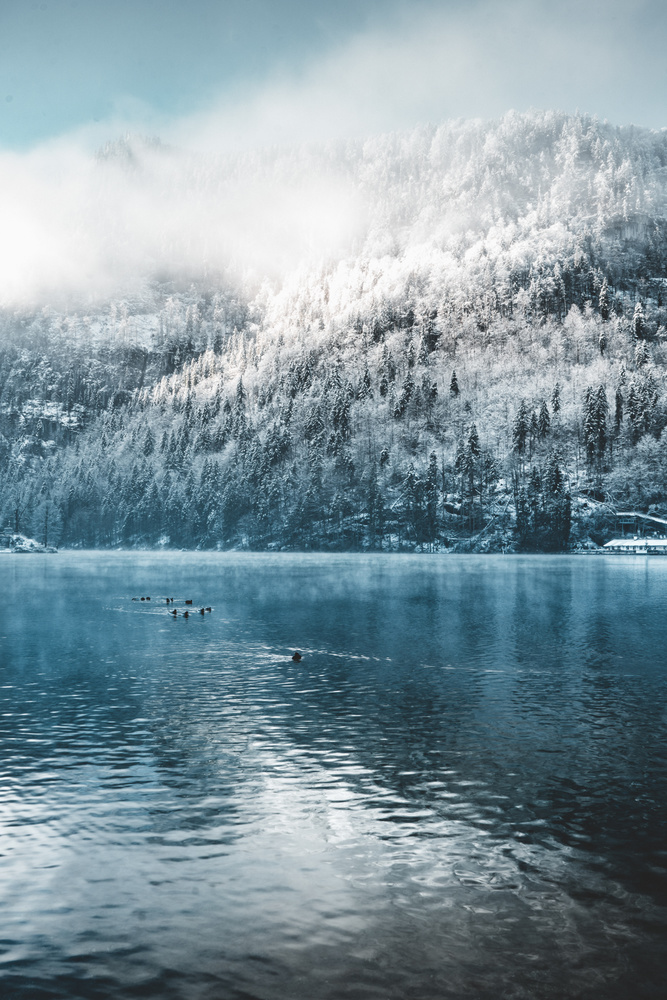 Early morning at the Königssee lake in Germany by Steven de Vet