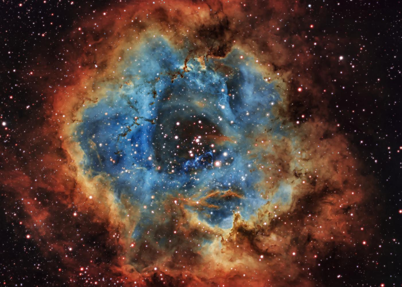 Rosette nebula by Steven de Vet