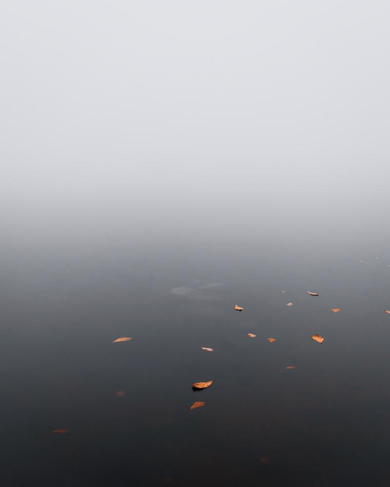 Autumn lake by Steven de Vet
