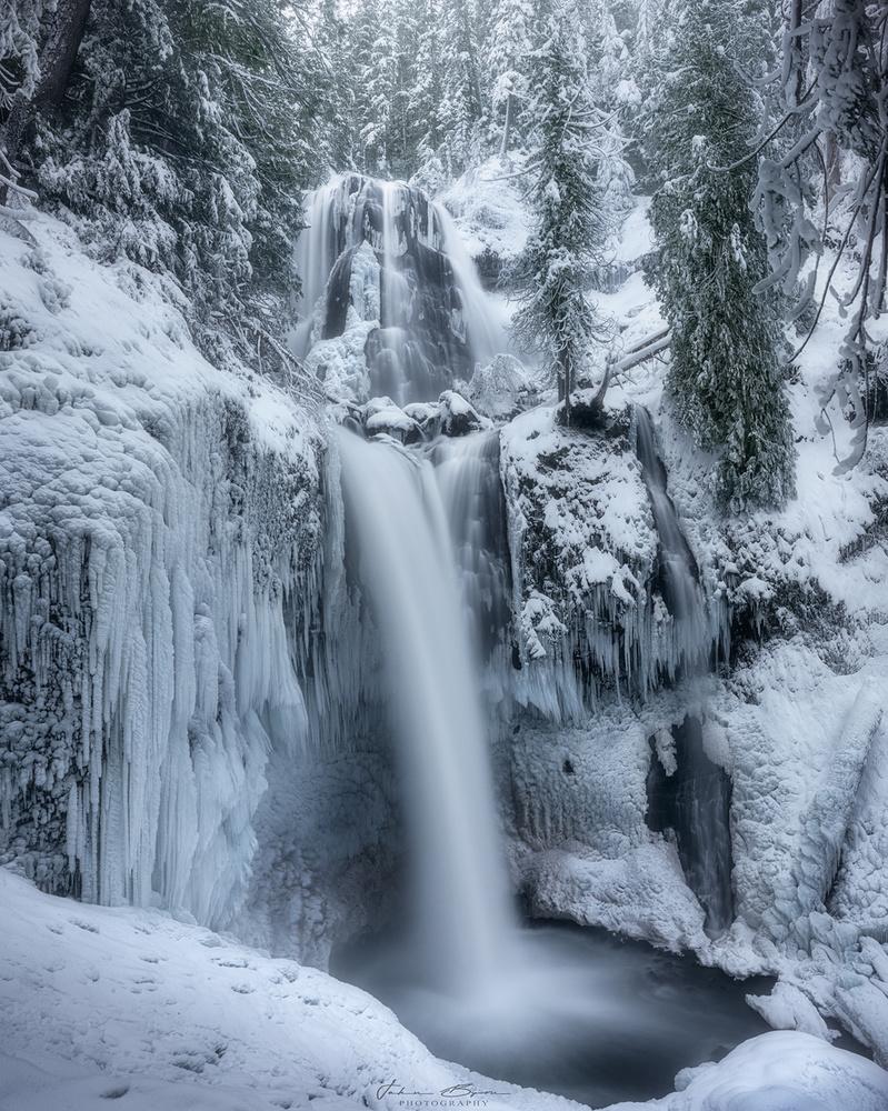 Winter Wonderland by John Byrn