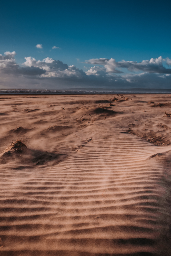 Windy Beach by Griffith Bowen