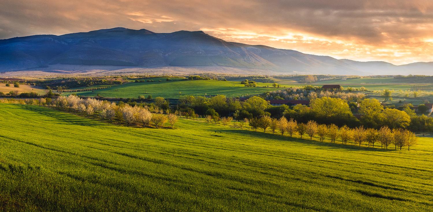 Bulgarian spring morning by Vladislav Chanev