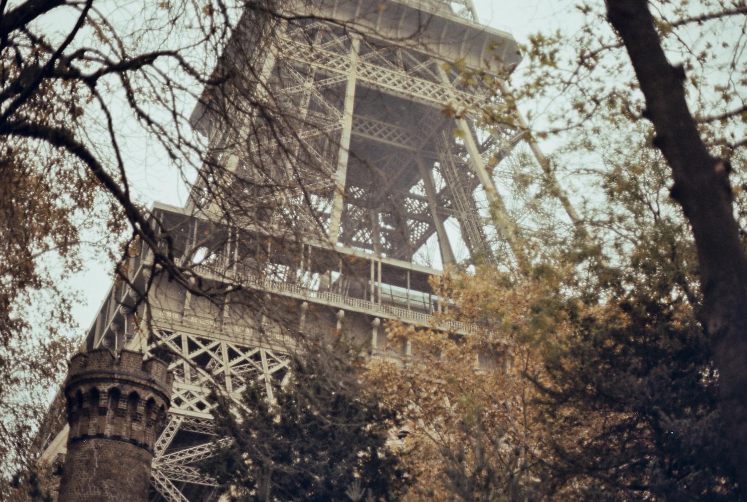 Eifel Tower through trees by Joe Irving
