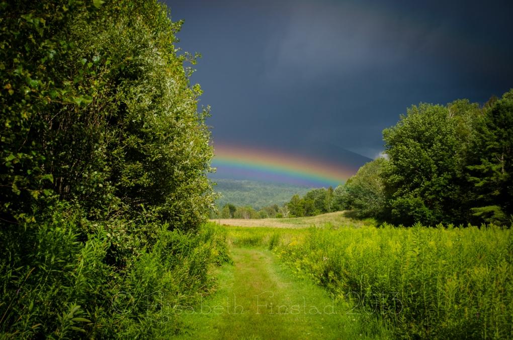 Rainbow Path by Elisabeth Finstad