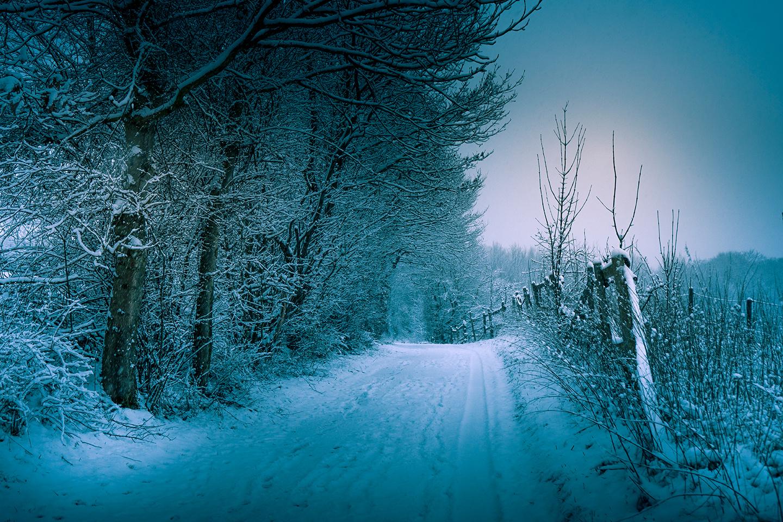 Winter.. walk by Felix Berger
