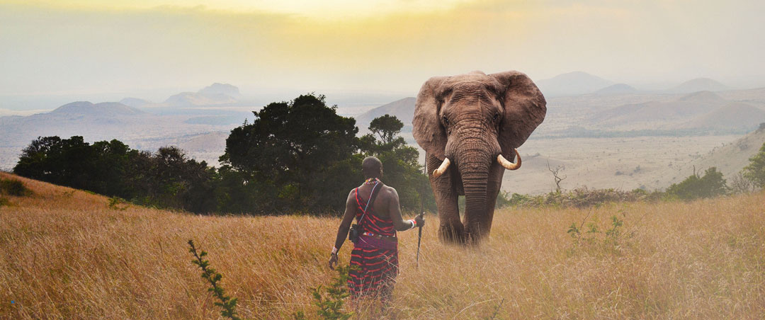 The Encouter by Wachira Mwangi