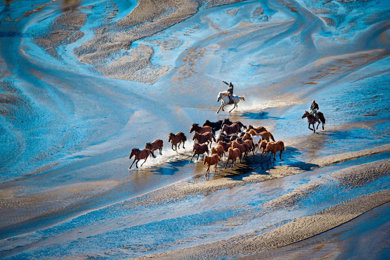 Horsepower by J Lee