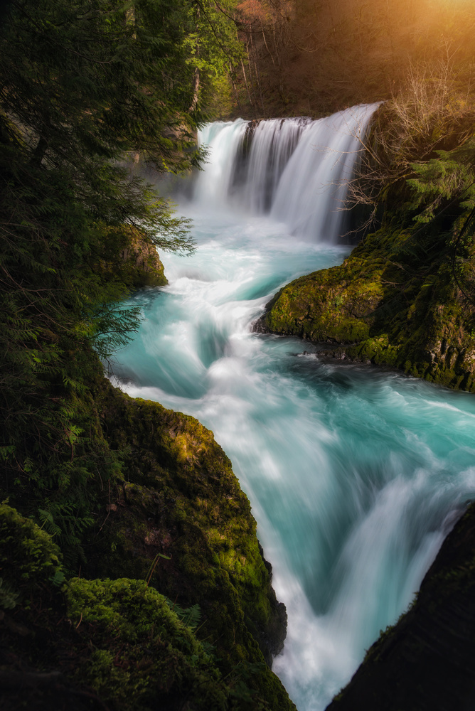 Pacific Northwest Paradise by Nick Wiltgen