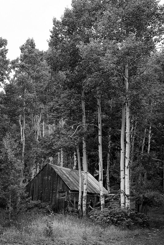 Cabin In The Aspens by Bud Simpson