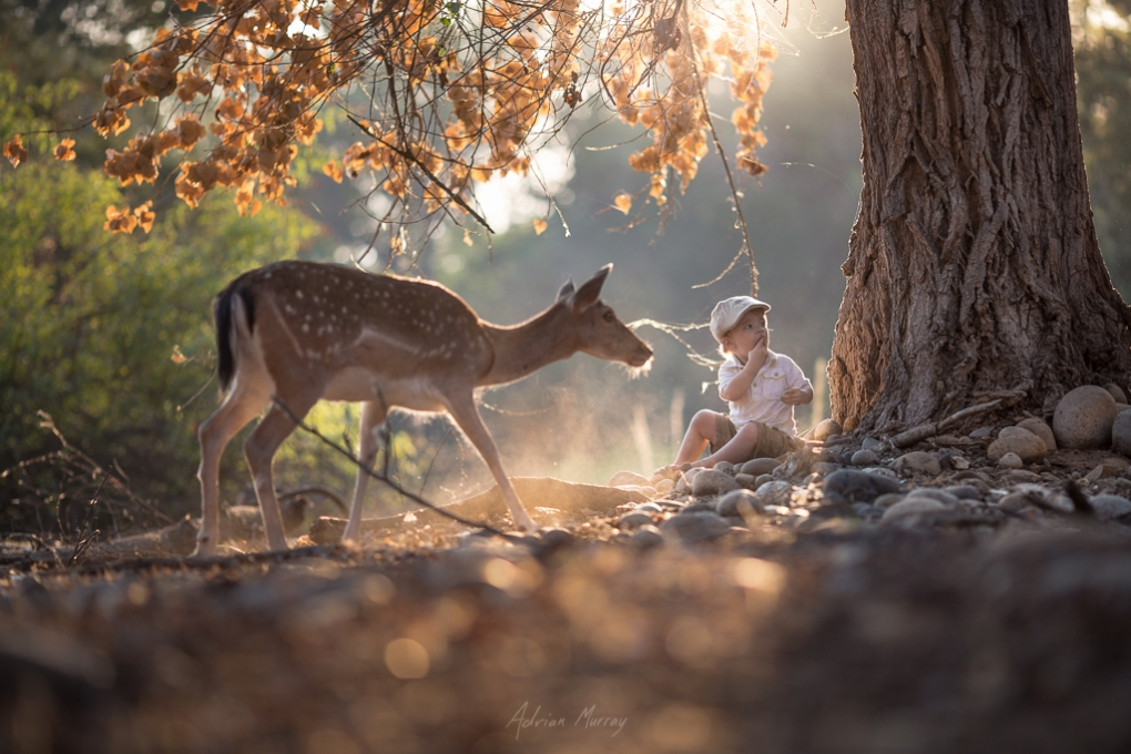 Common Ground by Adrian Murray