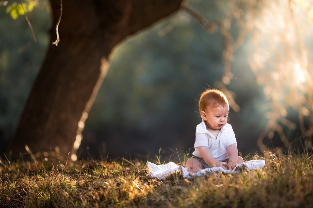 Our Redhead by Adrian Murray