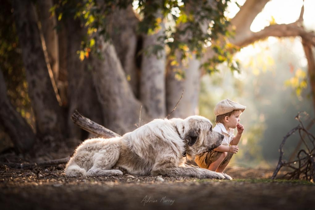Best Friends by Adrian Murray