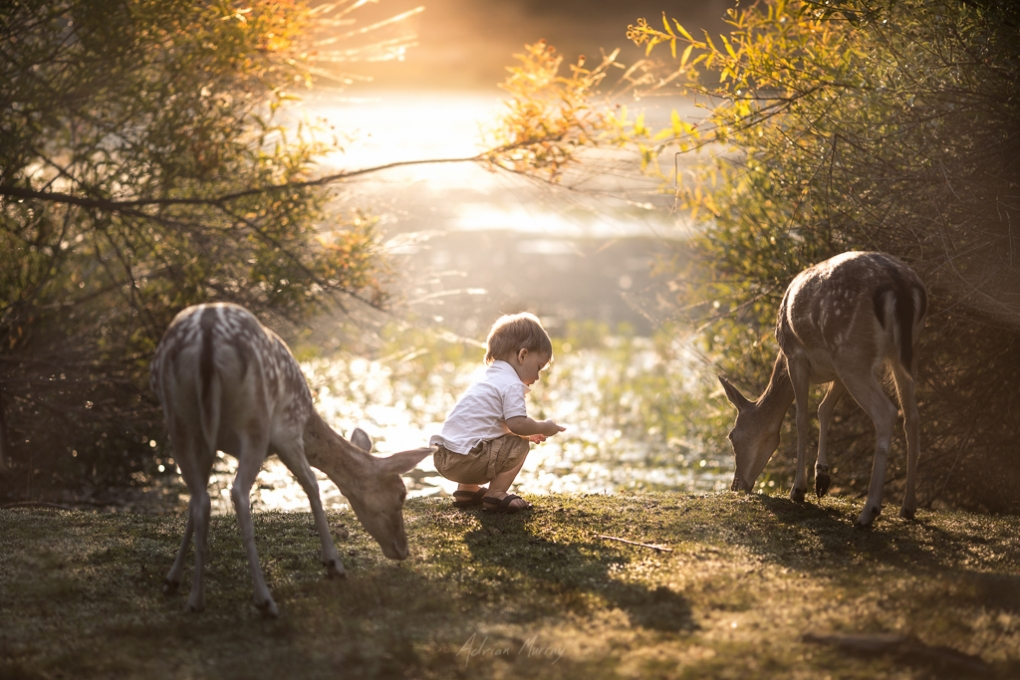 At One With Nature by Adrian Murray