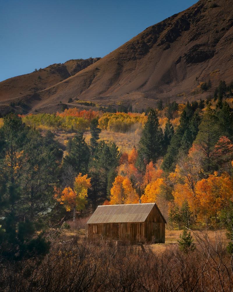 Vintage Fall Cabin by Hari V Iyer