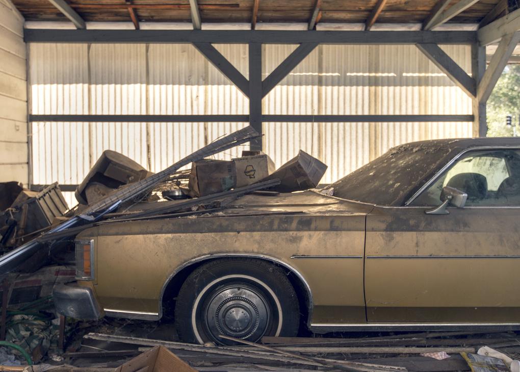 Rust Free by Sam Meyer