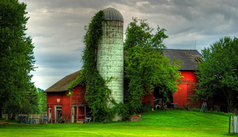 Peace on the Farm by Mark Worthen