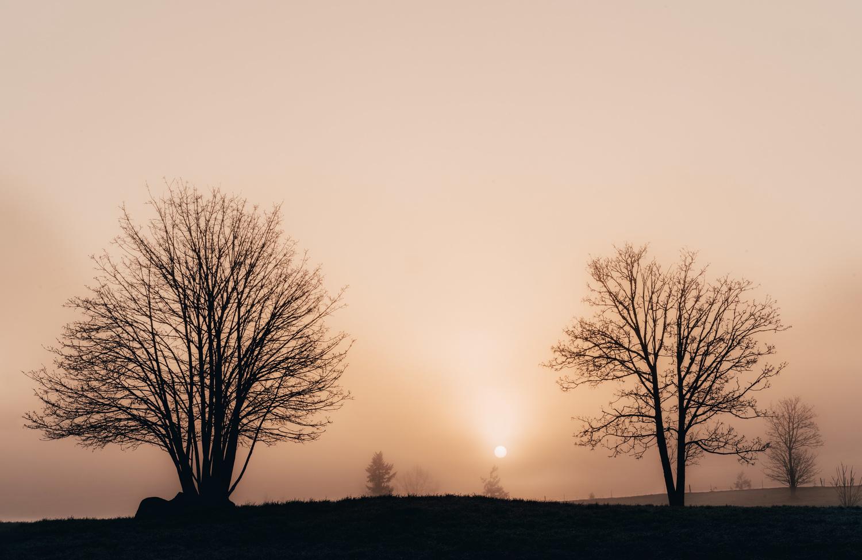 Rising Sun by Christopher Doelman