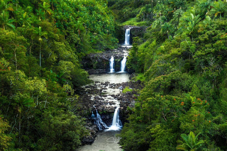 Umauma Falls by Creigh McIntyre