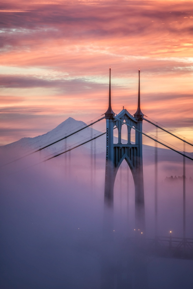 St Johns Fog by Jarred Decker