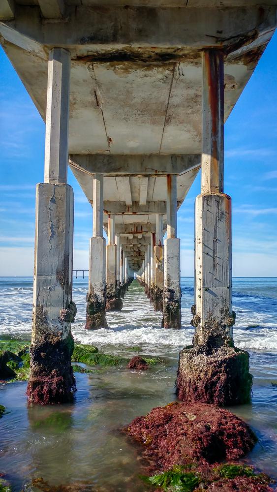 Ocean Beach Fishing Pier by Josh Utley