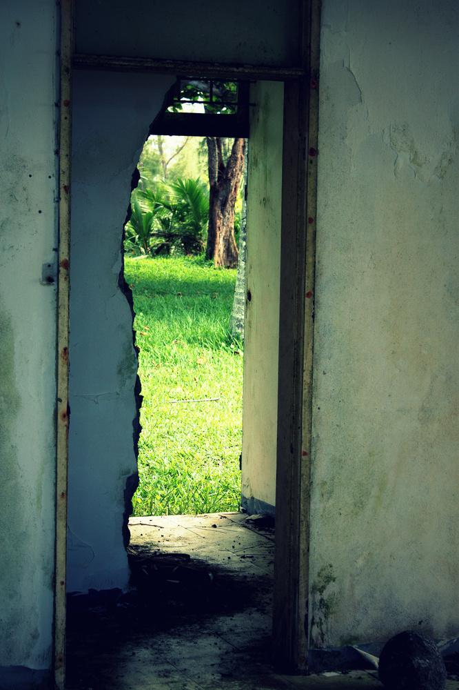 Doorway to Nature by Shaun Botha