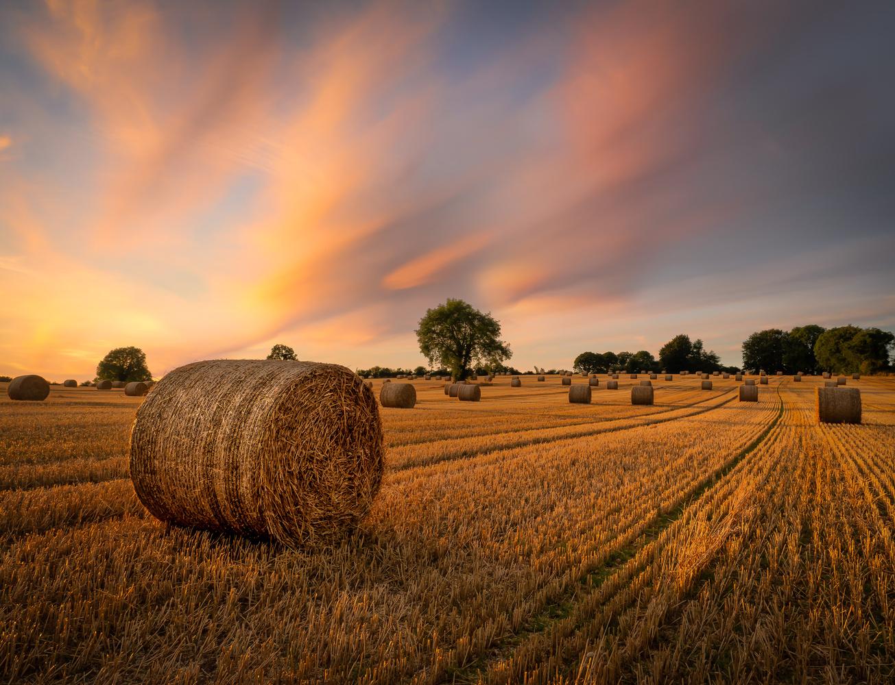 Straw Bales Sunset by Sean O' Riordan
