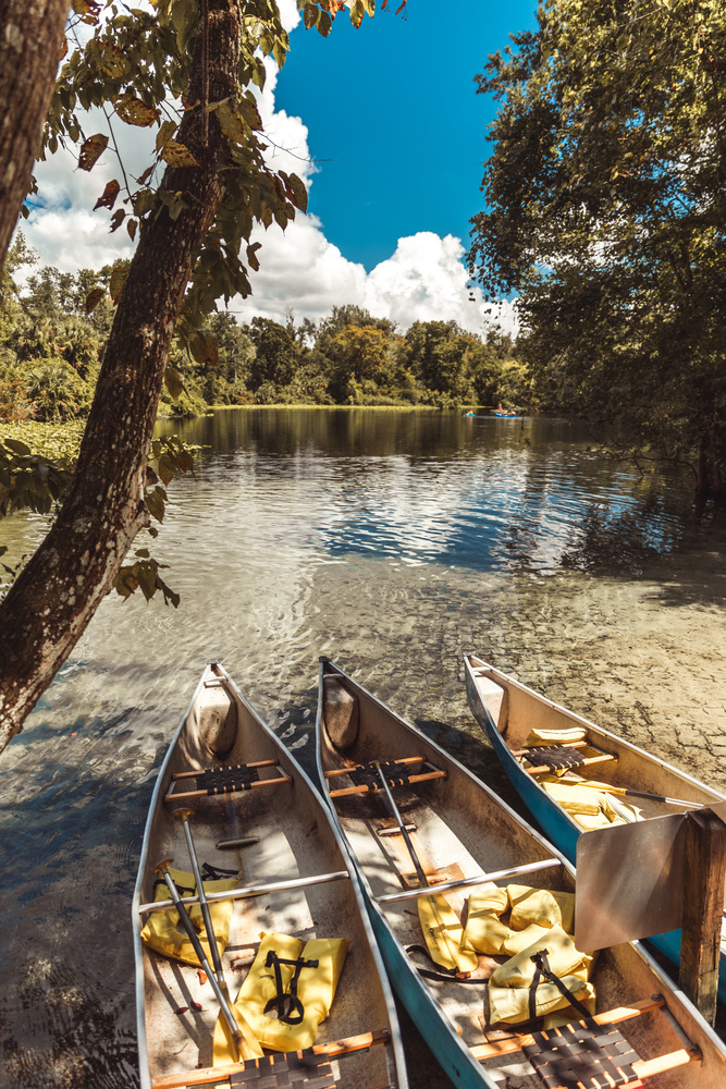 Kayak by Aaron Aaron