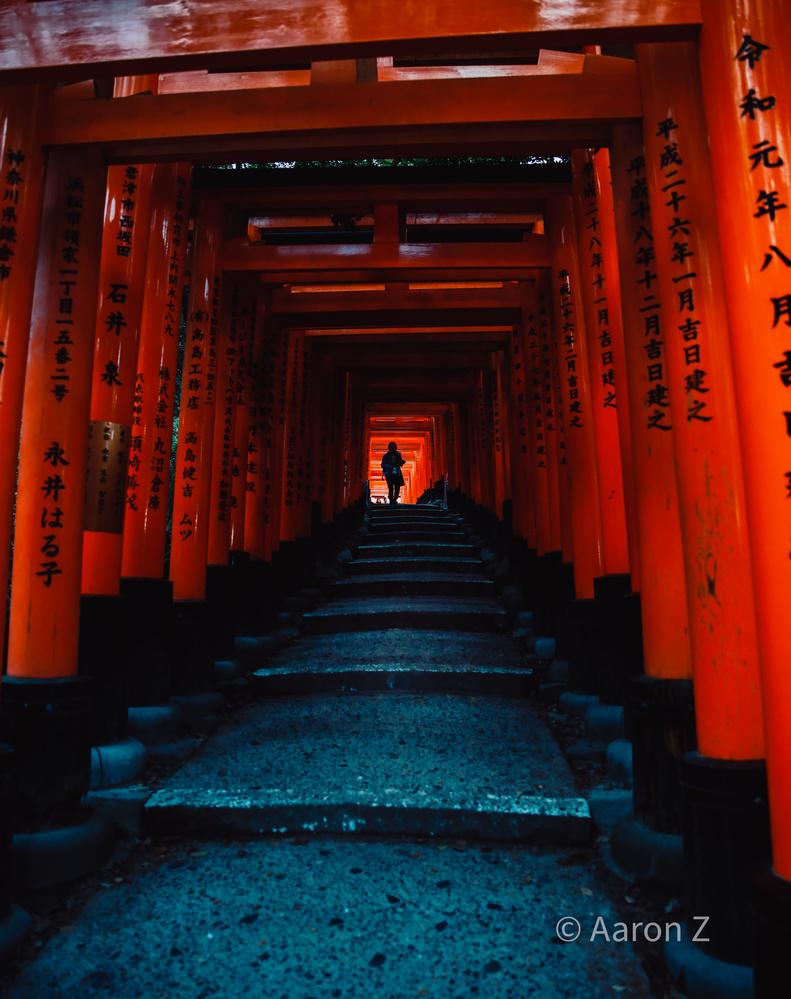 Kyoto Shrine by Aaron Aaron