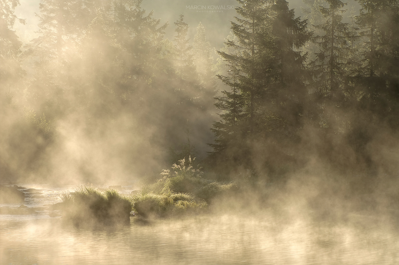 Foggy morning by Marcin Kowalski