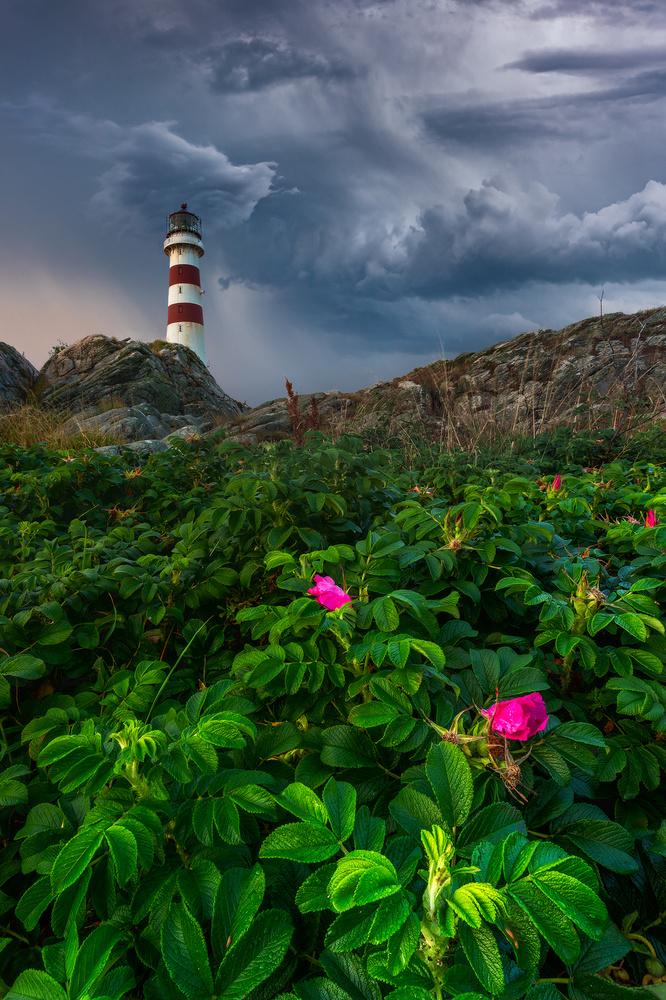 Oksøy lighthouse after the storm by Marcin Kowalski