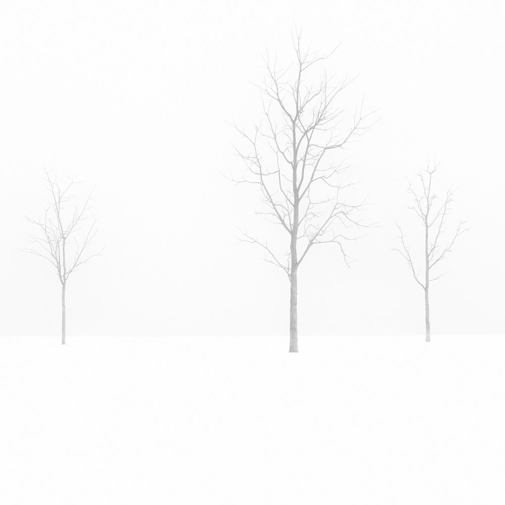 Chicago Vortex by john barnard